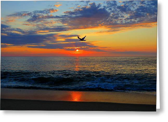 Dawning Flight Greeting Card by Dianne Cowen