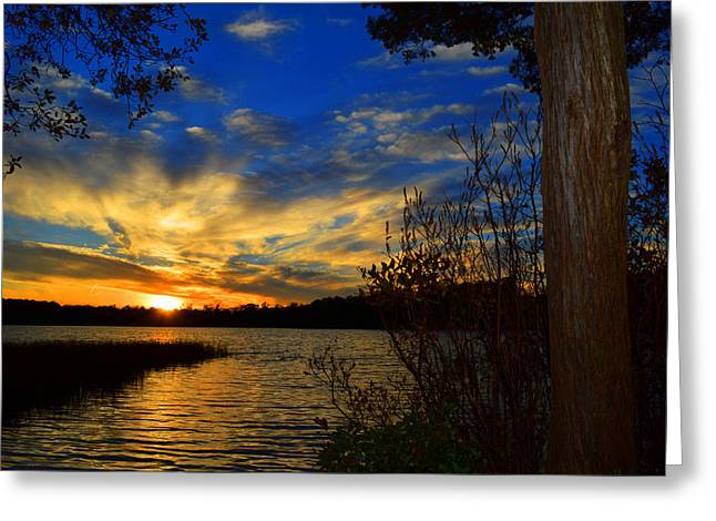 Day Is Done Greeting Card by Dianne Cowen