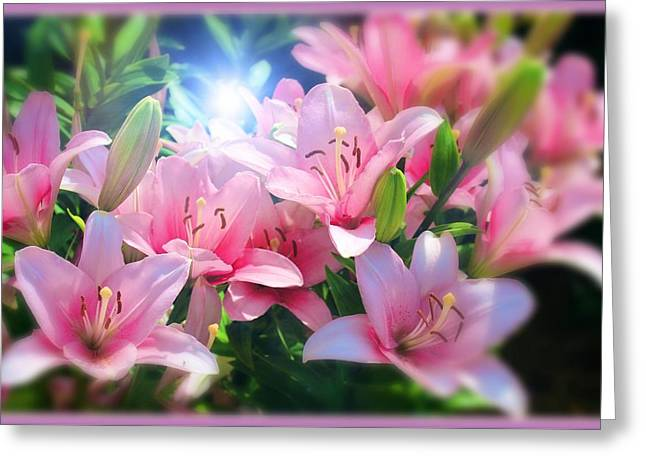 Day Light Lilies Greeting Card by Mindy Newman