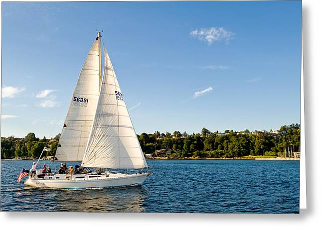 Day Sail Greeting Card by Tom Dowd