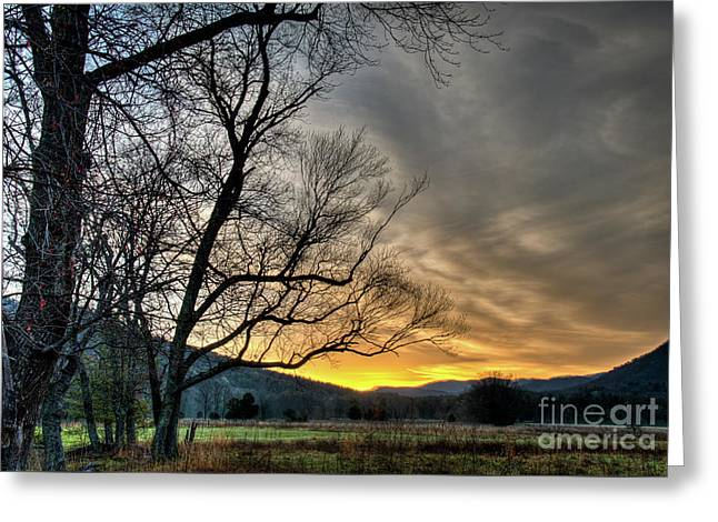 Daybreak In The Cove Greeting Card by Douglas Stucky