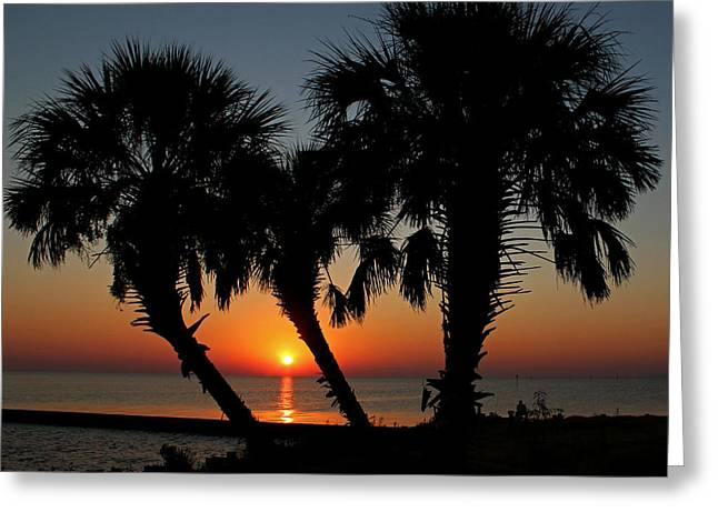 Greeting Card featuring the photograph Daybreak by Judy Vincent