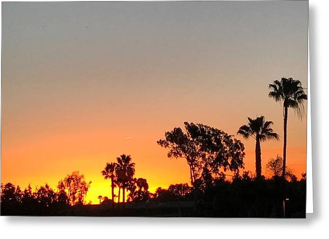 Greeting Card featuring the photograph Daybreak by Kim Nelson