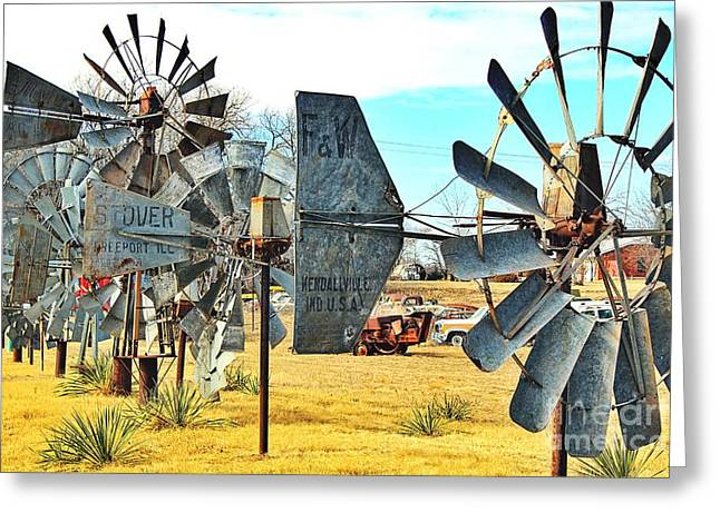 Daylight In The Garden Of Rust And Metal Greeting Card by Jenny Revitz Soper