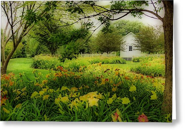 Daylilies In The Garden Greeting Card by Sandy Keeton