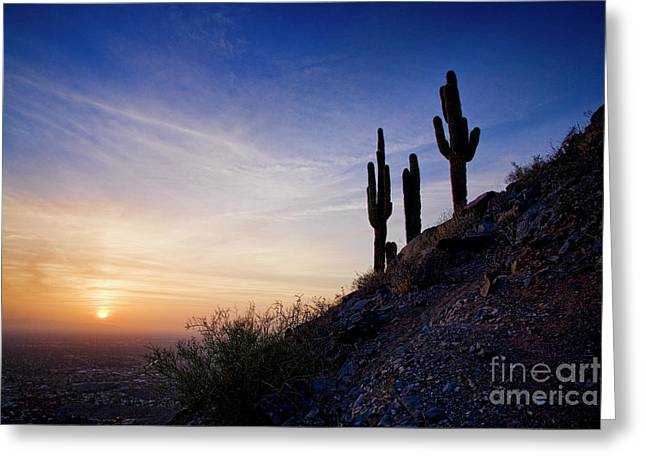 Days End In The Desert Greeting Card
