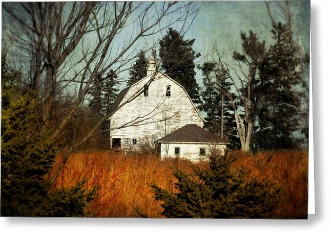 Days Gone By Greeting Card by Julie Hamilton