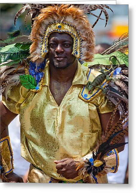 Dc Caribbean Carnival Greeting Cards - DC Caribbean Carnival No 21 Greeting Card by Irene Abdou