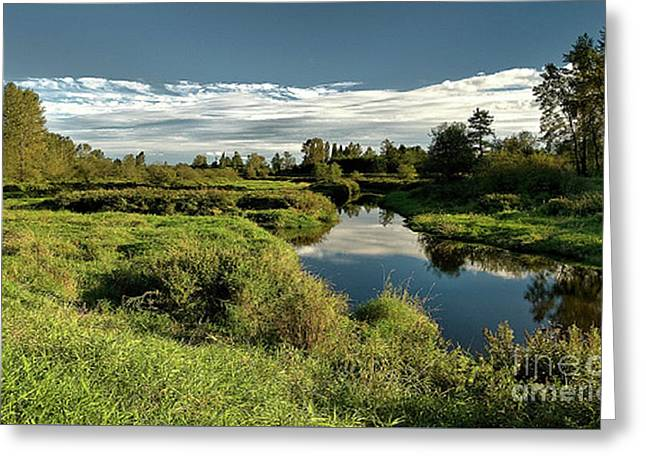 De Boville Slough At Pitt River Dike Greeting Card