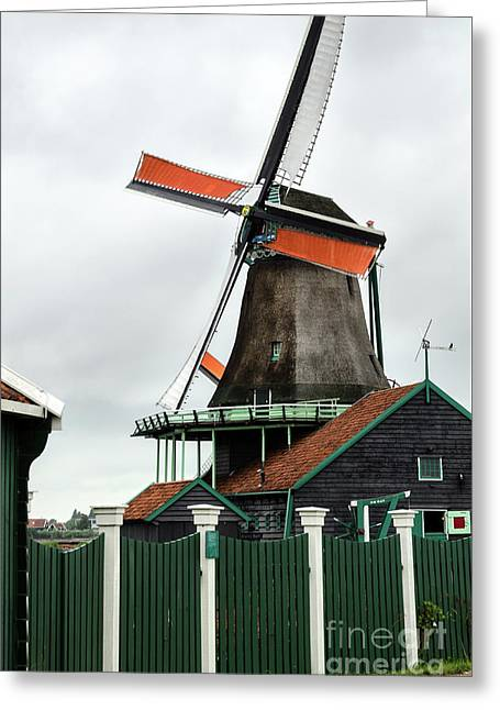 De Kat Windmill In Zaanse Schans Greeting Card by RicardMN Photography