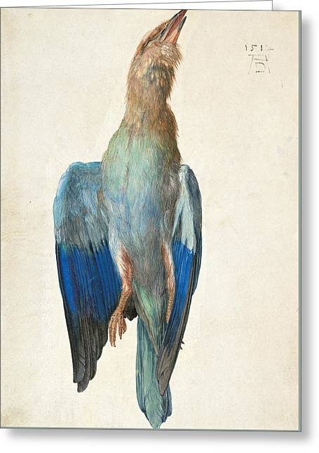 Dead Blue Roller Greeting Card by Albrecht Durer