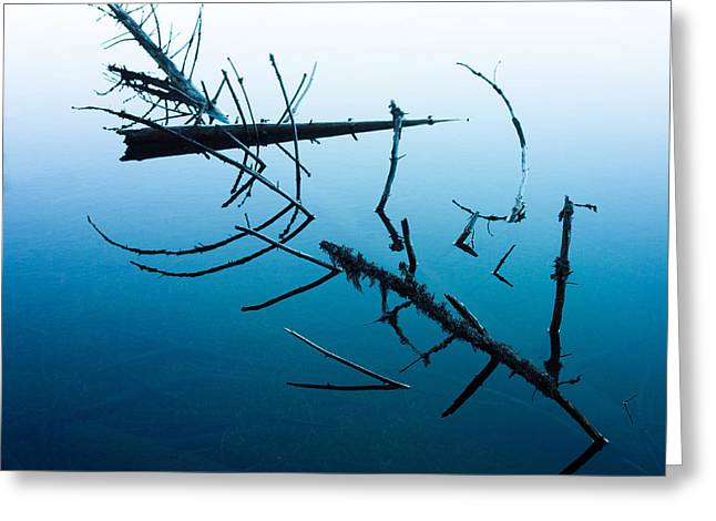 Dead Branches Into A Lake Greeting Card by Bernard Jaubert
