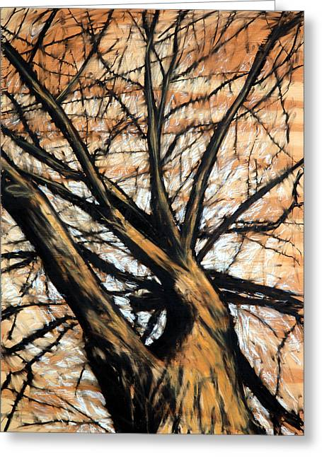 Dead Elm Greeting Card by John Terwilliger