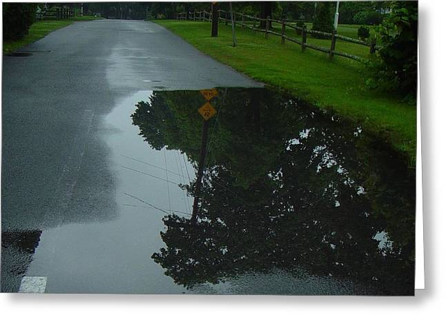 Dead End Puddle Greeting Card by Ron Sylvia