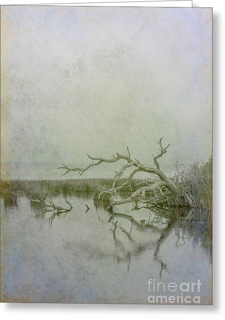 Greeting Card featuring the digital art Dead In The Water by Randy Steele