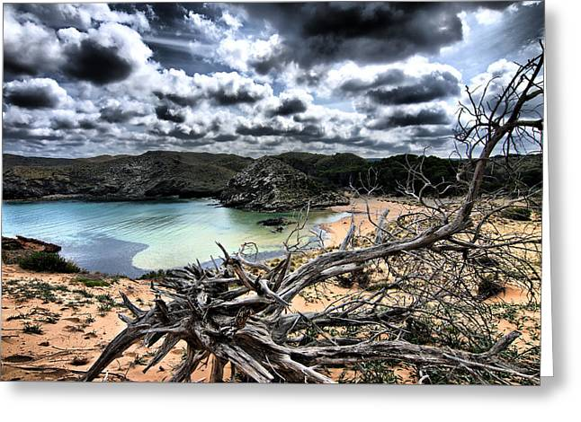 Dead Nature Under Stormy Light In Mediterranean Beach Greeting Card by Pedro Cardona