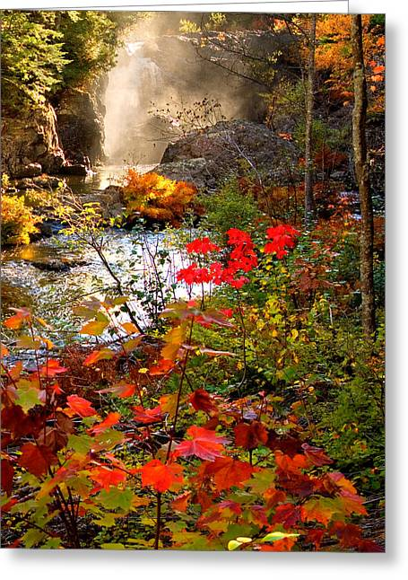 Dead River Falls Foreground Plus Mist 2509 Greeting Card
