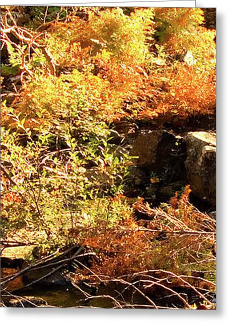3 Of 6 Dead River Falls  Marquette Michigan Section Greeting Card