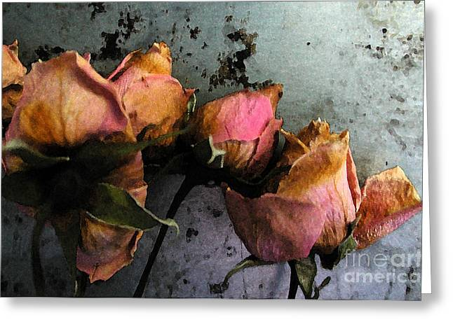 Dead Roses 2 Greeting Card