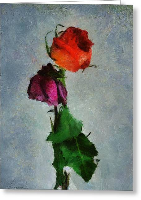 Dead Roses Greeting Card by Francesa Miller