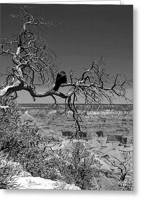 Dead Tree With Crow Greeting Card by Michael Perlin