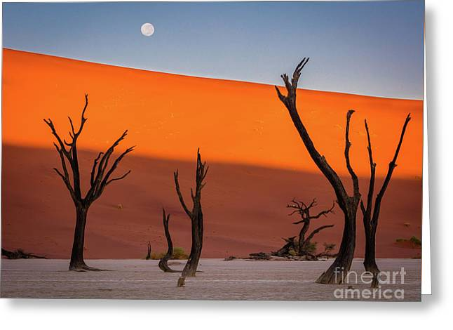 Deadvlei Full Moon Greeting Card by Inge Johnsson
