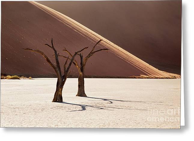 Deadvlei Trees Greeting Card by Richard Garvey-Williams
