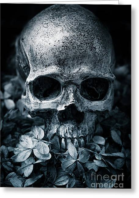 Greeting Card featuring the photograph Death Comes To Us All by Edward Fielding
