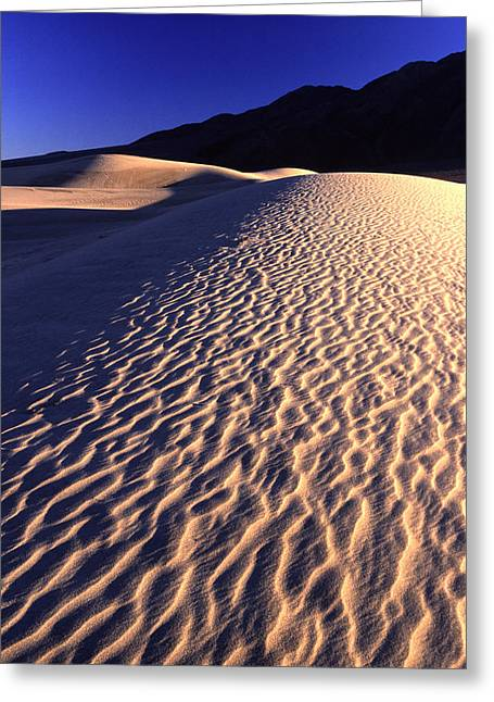 Death Valley Dune Greeting Card