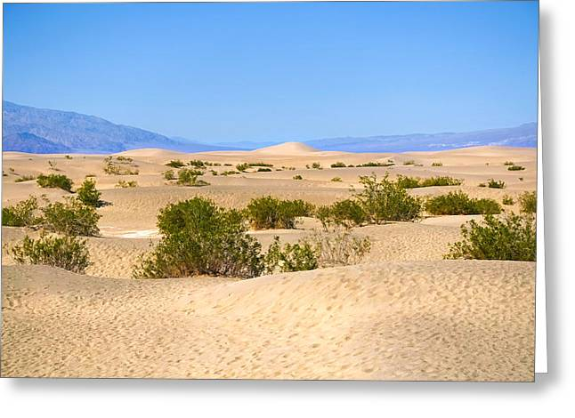 Death Valley Sanddunes Greeting Card