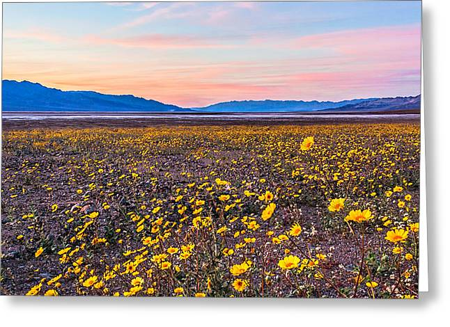 Death Valley Sunset Greeting Card