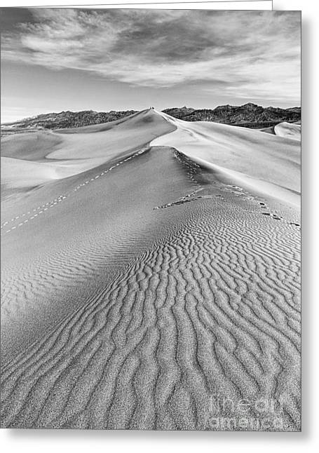 Deathvalley Ripples Greeting Card by Jamie Pham