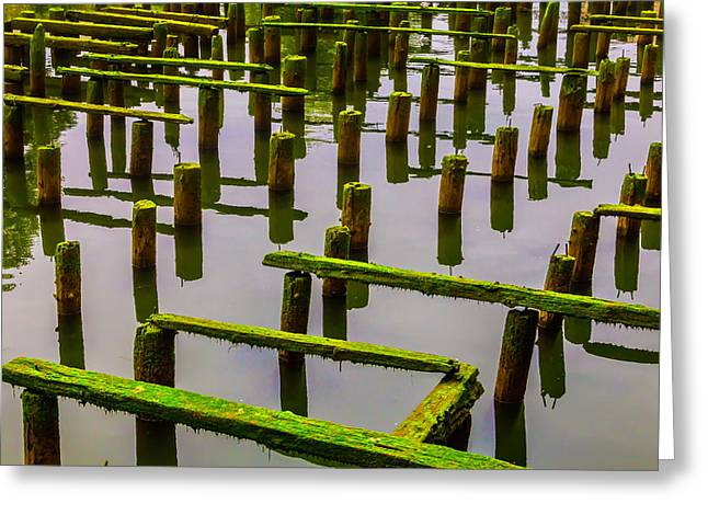 Decaying Old Dock Greeting Card by Garry Gay