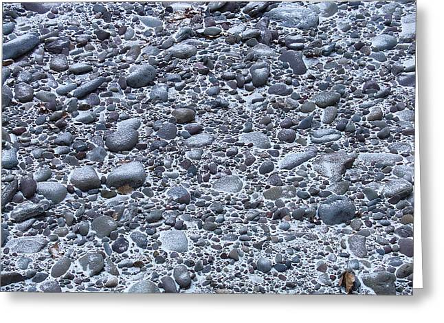 December Dusting Of The Creekbed Greeting Card
