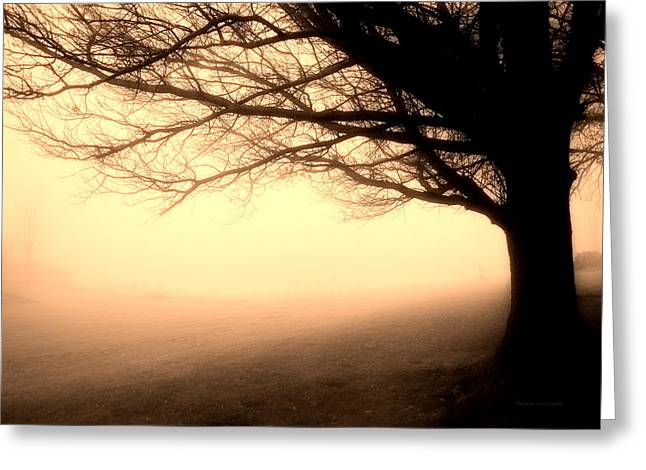 December Fog By The Sleepy Pin Oak Sepia Greeting Card by Thomas Woolworth