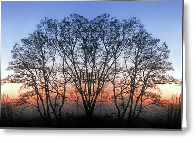 December Sunrise Greeting Card by Jaeda DeWalt