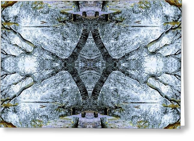 Deciduous Dimensions Greeting Card