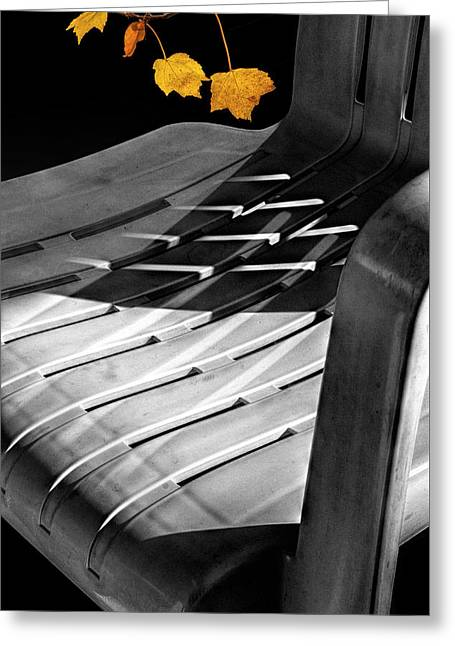 Deck Chair Shadows With Orange Autumn Leaves Greeting Card by Randall Nyhof
