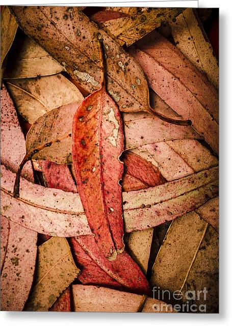 Decomposition In Fall Greeting Card