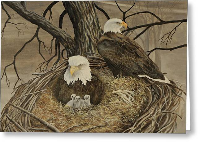 Decorah Eagle Family Greeting Card by Gloria Kittleson-Kearney