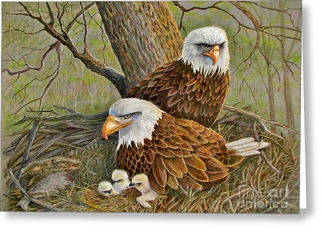 Decorah Eagle Family Greeting Card