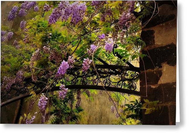 Decorated Trellis Greeting Card by Lainie Wrightson