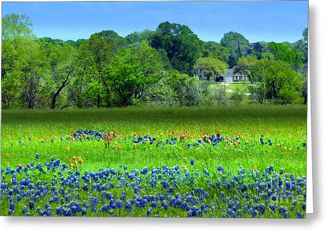 Decorative Texas Homestead Bluebonnets Meadow Mixed Media Photo H32517 Greeting Card