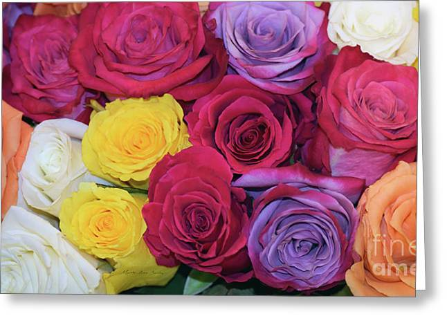 Decorative Wallart Brilliant Roses Photo B41217 Greeting Card