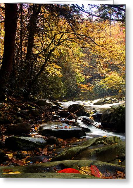 Deep Creek Mountain Stream Greeting Card