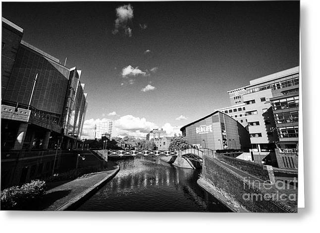 Deep Cutting Section Of Oozells Street Loop Area Birmingham Canal Navigations Brindleys Old Main Lin Greeting Card