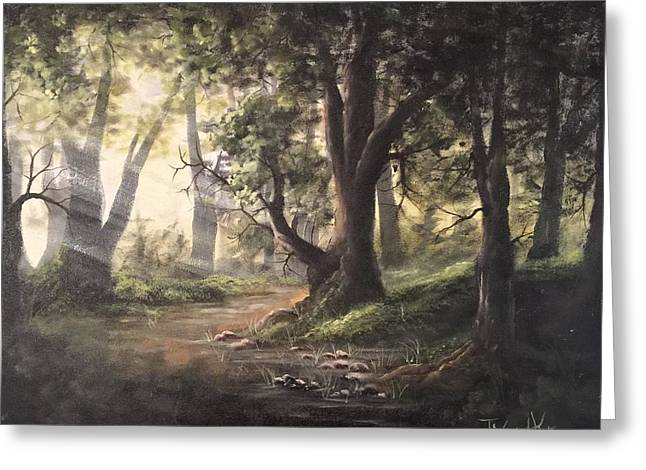 Deep Forest Rays  Greeting Card