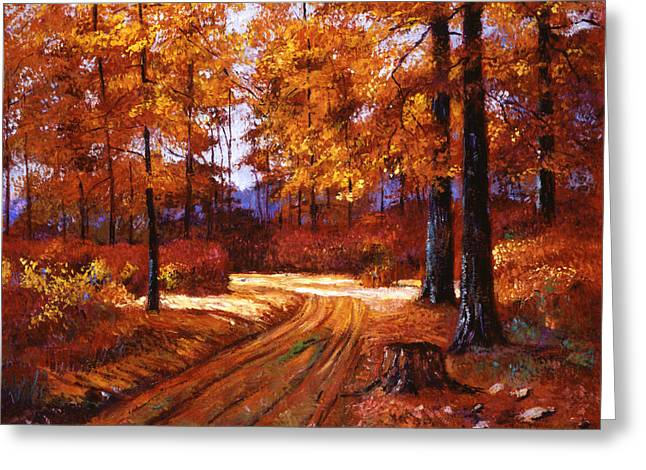 Deep Forest Road Greeting Card by David Lloyd Glover