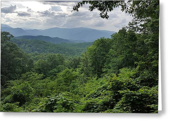Deep In The Great Smoky Mountains Greeting Card by John Arthur Robinson