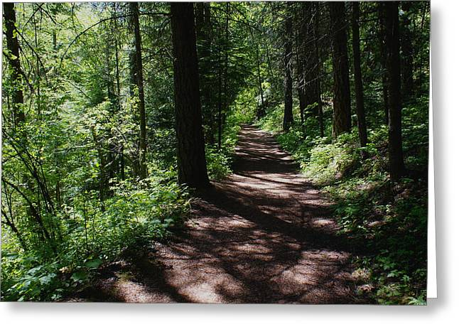 Greeting Card featuring the photograph Deep Woods Road by Ben Upham III